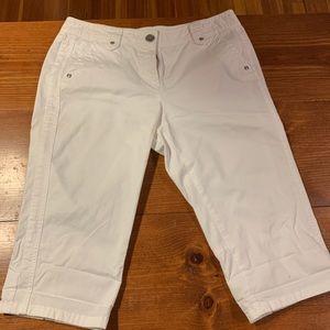 Ann Taylor shorts size 8p Lindsay